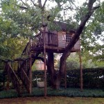 Shaved Cedar Treehouse