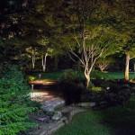 Landscape, Hardscape, Lighting, Pathway Lighting, Softscape Lighting, Bloomington, Residential, Night, Nightscape, Backyard, Stone Wall, Stone Steps, Retaining Wall, Residential Garden
