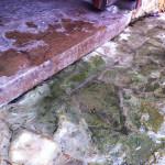 drainage solutions, hardscape,