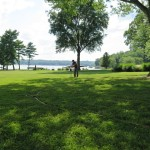 lake lemon, bloomington, in, phc, root injections, dhs enhanced compost tea, tree care, tree service, acer saccharinum
