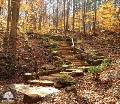 Natural Stone, Staircase, Sandstone Steps, Natural Sandstone staircase, Hardscape, Natural Setting, Woodland, Boulder, Wood Railing, Natural Railing, Natural Design